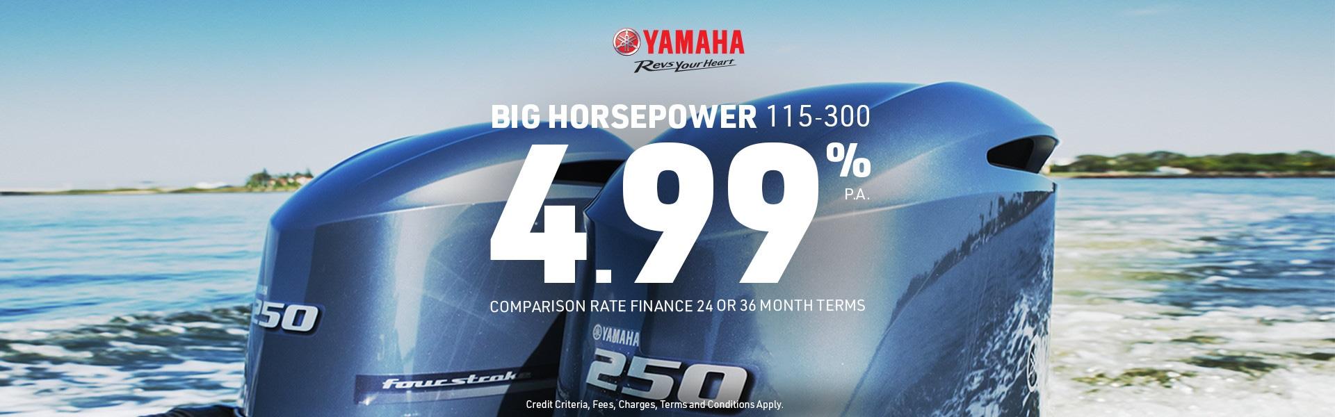 499-115-300HP-dealer-banner